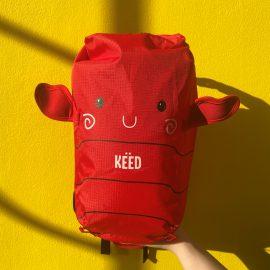 Waterproof Bag Lobster